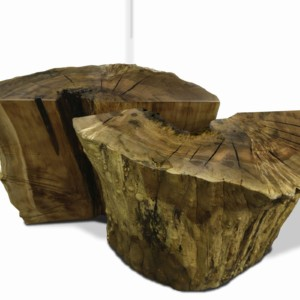 stump end tables